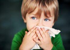 Los procesos alérgicos y la regulación de la respuesta inmunitaria