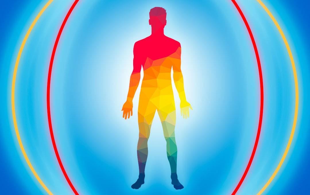 sistema-inmune-cuerpo