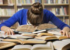 ¿Cómo ayudar al estudio?